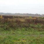 Ahrensdorfer Heide