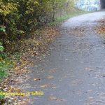 Mauerradweg in Teltow
