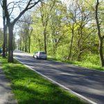 Radweg an der B166 durch den Nationalpark.