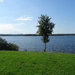 Senftenberger See