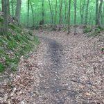 Wanderweg Nonnenfließ