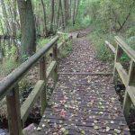 Brücke über das Mühlenfließ