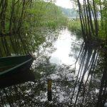 Mündung Mühlenfließ in den Großen Klobichsee