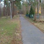Radweg am Werlsee