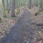 Wald(Rad)weg durch das untere Annatal