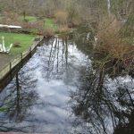die alte Löcknitz in Fangschleuse-Gottesbrück