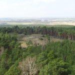 Blick vom Aussichtsturm auf den Götzer Berg