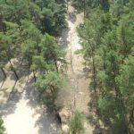 Bodenblick vom Aussichtsturm