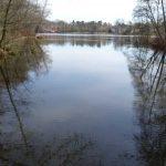 Bucht im Boddensee