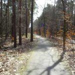 Radweg an der Friedensalle Richtung Briese