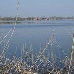 Möserscher See Blick auf Kirchmöser