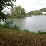 links Wriezener Alte Oder rechts Oderberger See