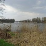 die Havel bei Gollwitz
