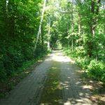 Dahmeradweg nach Rietzneuendorf