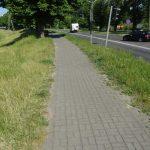 Radweg an der Straße des 1. Mai
