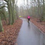 Berliner Mauerweg im Spandauer Forst