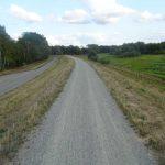 Elberadweg bei Cumlosen