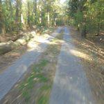 Havellandradweg Pessin-Paulinenaue