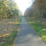 Havellandradweg Rathenow-Stechow