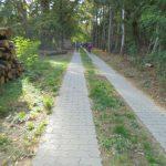 Havellandradweg Paulinenaue-Pessin