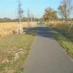 Havellandradweg an der B 273 im Ländchen Glien