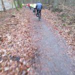 Radweg im Tegeler Forst