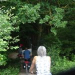 Einfahrt in den Gespensterwald