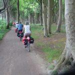 Radweg im Gespensterwald