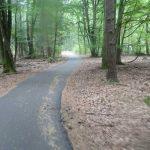 Radweg Gollin-Friedrichswalde