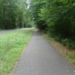 Radweg an der L 15 Richtung Fürstenberg