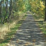 Storchenradweg bei Butzow