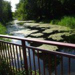 Friedrich-Wilhelm-Kanal
