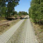 Radweg durch die Reicherskreuzer Heide