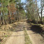 Glienicker Weg nach Fahrland