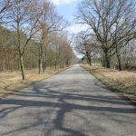 Straße Malge-Wilhelmsdorf