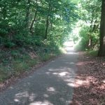 Radweg am Haussee