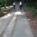 Radweg im NSG Hullerbusch