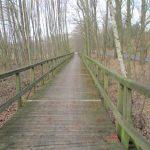 Radweg Ferch-Caputh