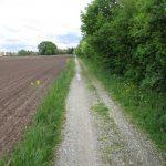 Radweg Salga-Brösa