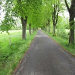 Radweg Niedergurig
