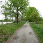 Radweg zwischen den Teichen