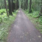 Spreeradweg Leipe-Lübbenau