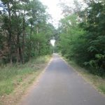 Spreeradweg Werder-Kossenblatt