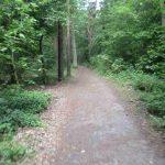 Uferweg Müggelspree Köpenick
