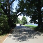 Uferweg im Treptower Park
