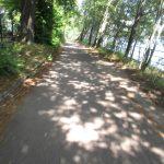Uferweg im Plänterwald