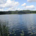 Grzybno-See