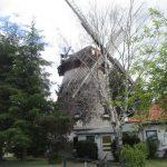 Hasselförder Mühle