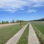 Plattenweg auf dem Oderdeich