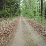 Radweg Theerofen-Weißensee